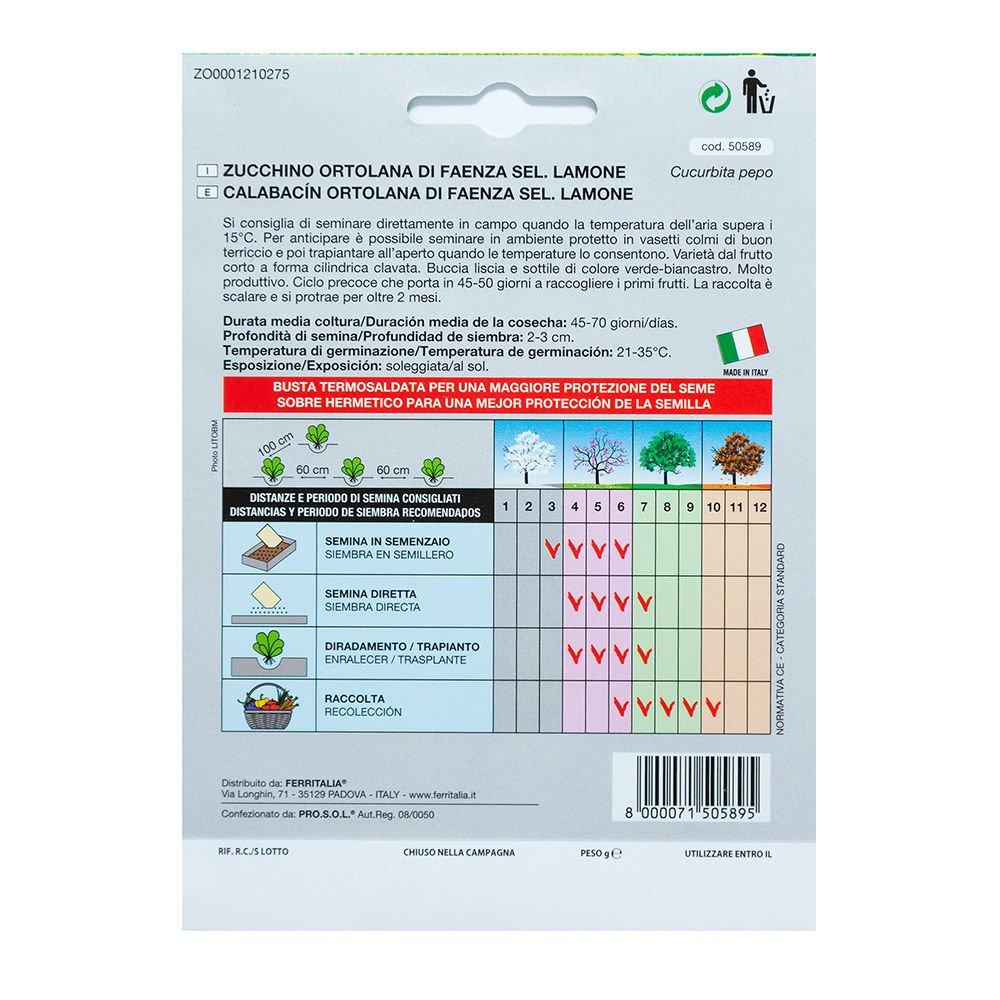 5 Gramos Semillas Calabacin Claro