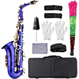 Alto Saxophone, Eb E-Flat Brass Engraved Alto Saxophone Sax Abalone Shell Buttons Wind Instrument with Case Gloves…