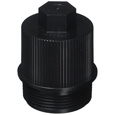 Pentair 190030 Drain Plug Cap Assembly Replacement Pool and Spa Filter: Garden & Outdoor