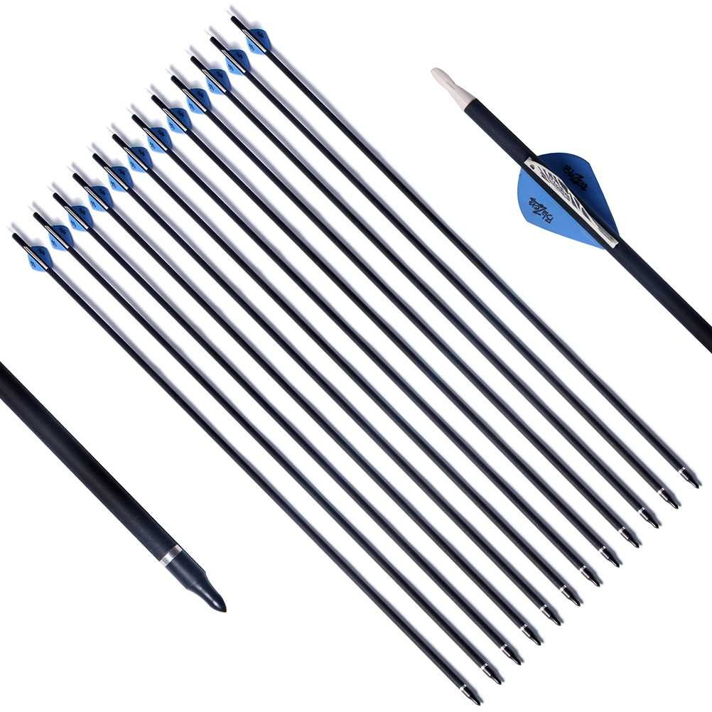 PG1ARCHERY Archery Target Carbon Arrows, 30 inch Practice Arrow 2'' Fletched Vanes with Removable Field Points Tips for Hunting (Pack of 12) Blue White
