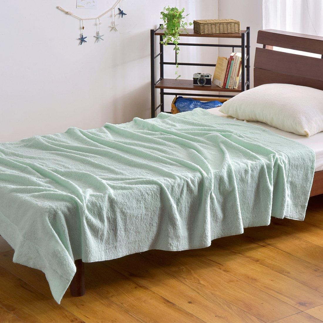 ベッドとタオルケット