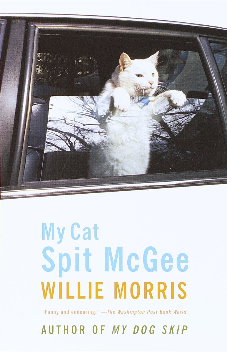 My Cat Spit McGee ebook