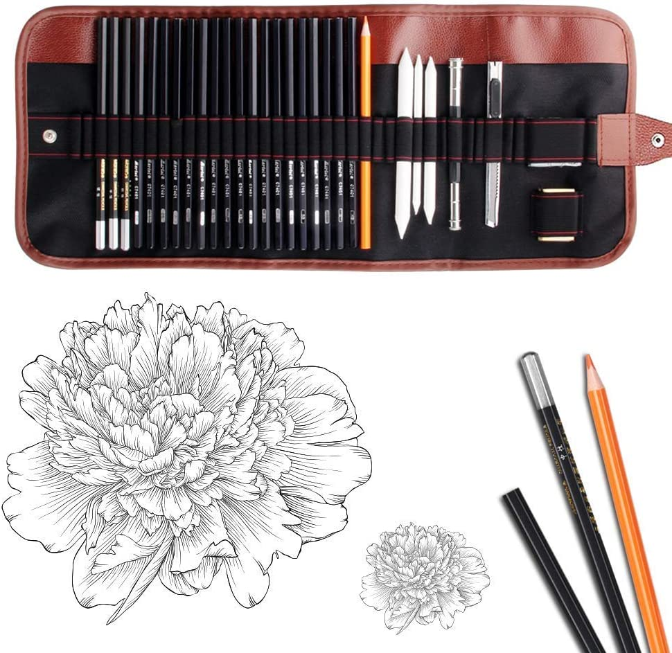 Dowswin 29 Pieces Pen Charcoal Sketch Set Sketching Pencil Set of Pencils Eraser Craft Knife Pencil Extender Roll up Canvas Carry Pouch Pro Art Supply for Beginners Artist