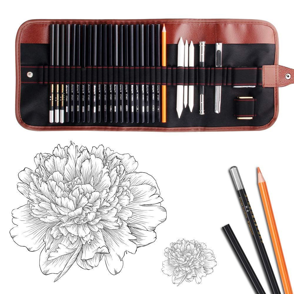 Dowswin 18 Pieces Pen Charcoal Sketch Set Sketching Pencil Set of Pencils Eraser Craft Knife Pencil Extender Roll up Canvas Carry Pouch Pro Art Supply for Beginners Artist by Dowswin