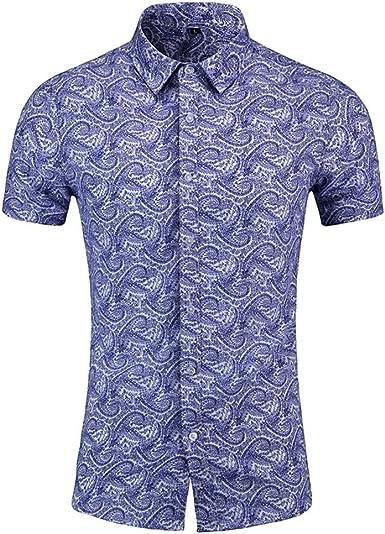 Sylar Camisetas Hombre Manga Corta Verano Casual Camisas Hawaiana Hombre Vintage impresión Camisa de Playa Slim fit para Hombre T-Shirt Tops XXL: Amazon.es: Ropa y accesorios
