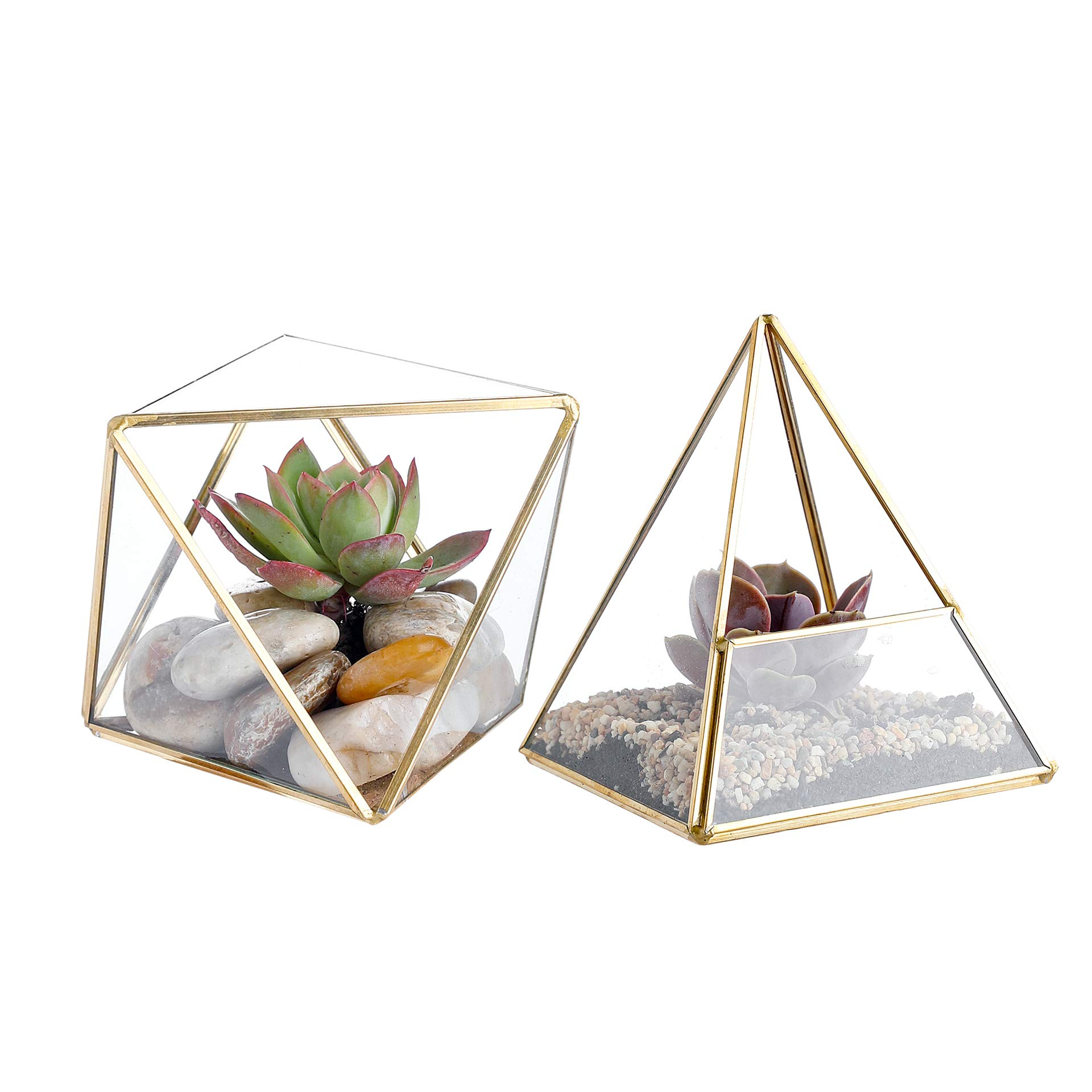 Whole Housewares Glass Geometric Terrarium Container 4.5X5.2 inch and 4.3X3.7 inch Glass Terrarium for Succulent & Air Plant (Gold, 2pcs) by Whole Housewares
