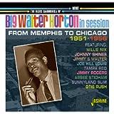 Blues Harmonica Of Big Walter Horton In Session 1951-1956