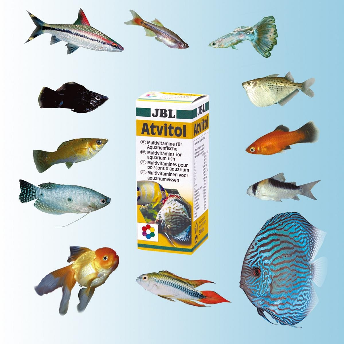 Atvitol multivitamin f r aquarienfische tropfen 50 ml ebay for Stor fur gartenteich