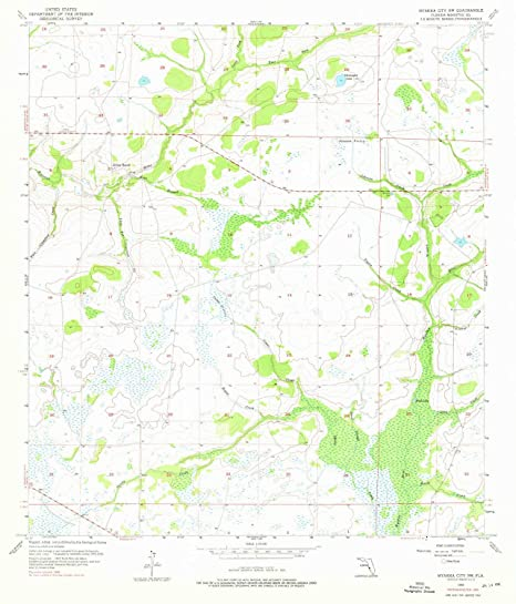 Myakka City Florida Map.Amazon Com Yellowmaps Myakka City Nw Fl Topo Map 1 24000 Scale