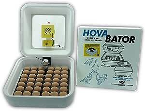 HovaBator Genesis 1588 Advanced Egg Incubator Combo Kit