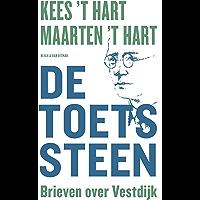 De toetssteen: Brieven over Vestdijk