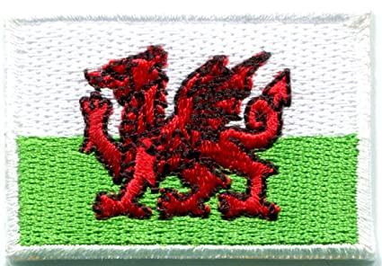 Amazon.com: flag of wales welsh red dragon celtic goth embroidered