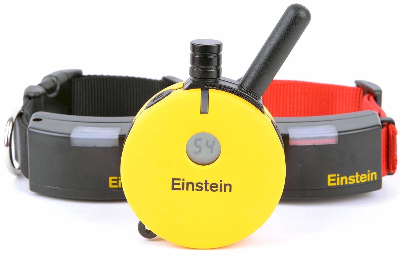 Einstein Two Dog 1 2 Mile Remote Training System Collar