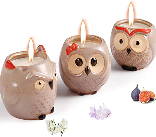 Scented Candles Sets Gifts, Novelty Owl Natural Soy Candles
