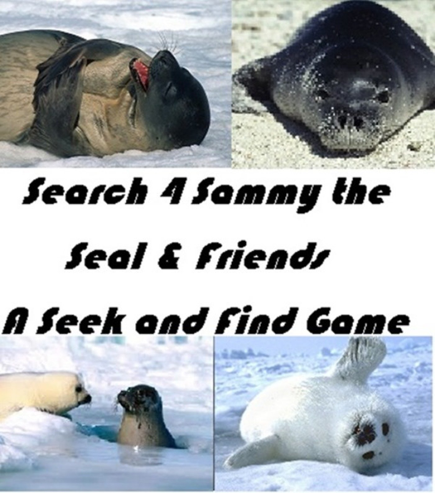 99 Cents Games Search 4 Sammy the Seal and Friends!: 99 Cent Seek