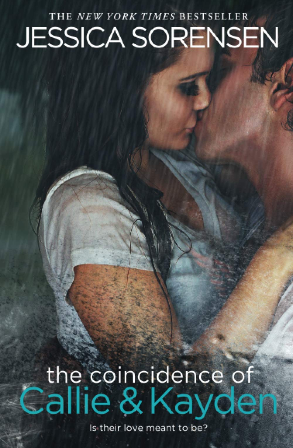 Read The Coincidence Of Callie Kayden The Coincidence 1 By Jessica Sorensen