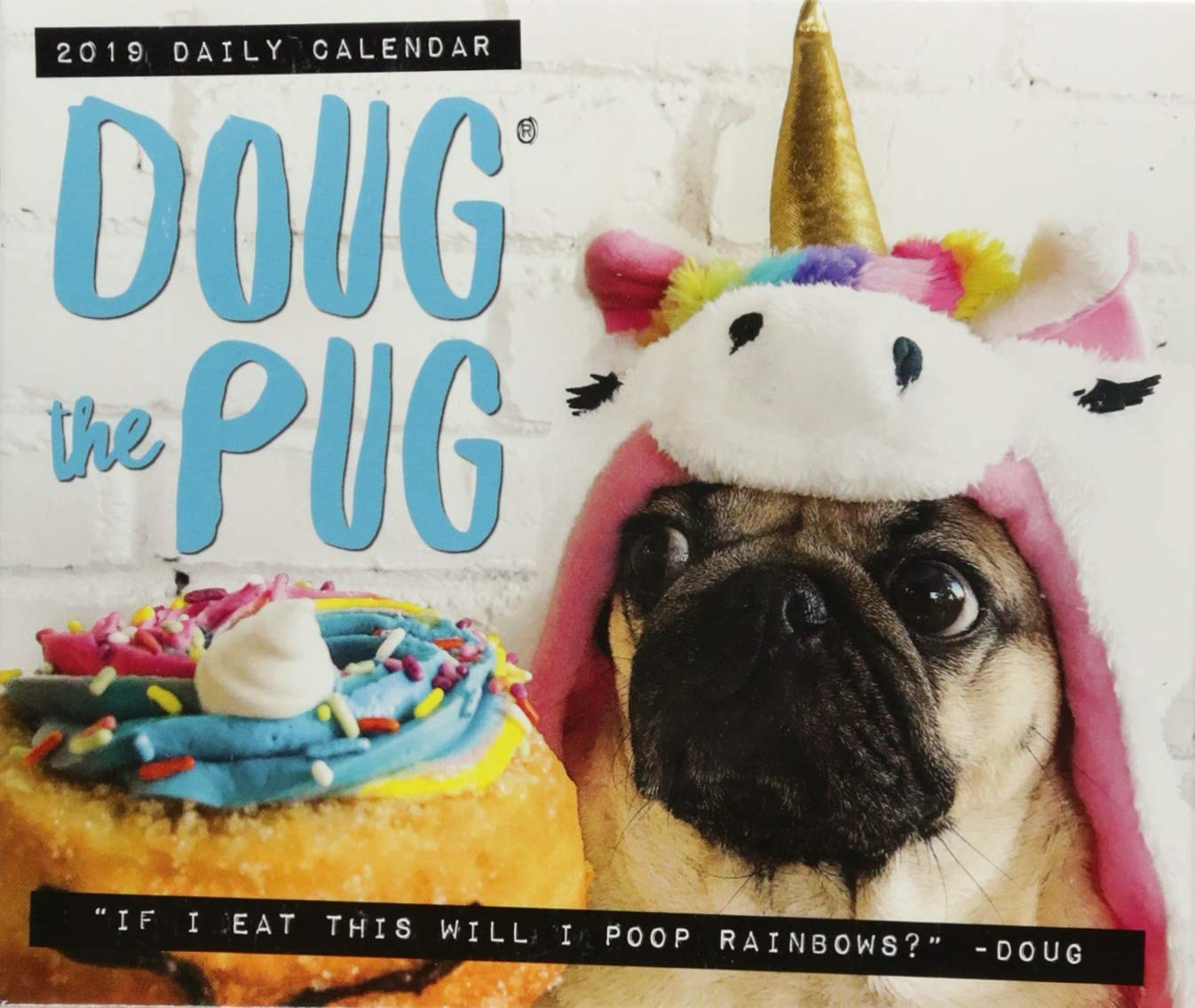 Doug the Pug 2019 Box Calendar (Dog Breed Calendar) Leslie Mosier Willow Creek Pr 1549203215 Calendars