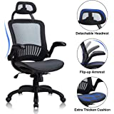 Home Office Chair Ergonomic Desk Chair High Back Computer Chair with Lumbar Support Flip-up Arms Headrest Adjustable Rolling Swivel Mesh Executive Chair for Women Men Adult, Black