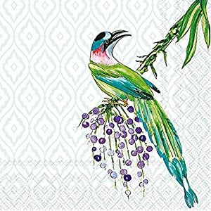 Boston International IHR Rosanne Beck Collection Cocktail Beverage Paper Napkins, 20-Count, 5 x 5-Inches, Tropical Birds