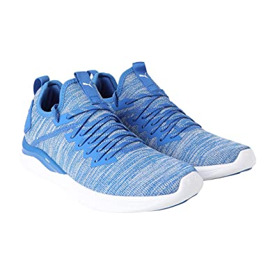 online store 419b6 656bc Puma Men's Ignite Flash Evoknit Running Shoes