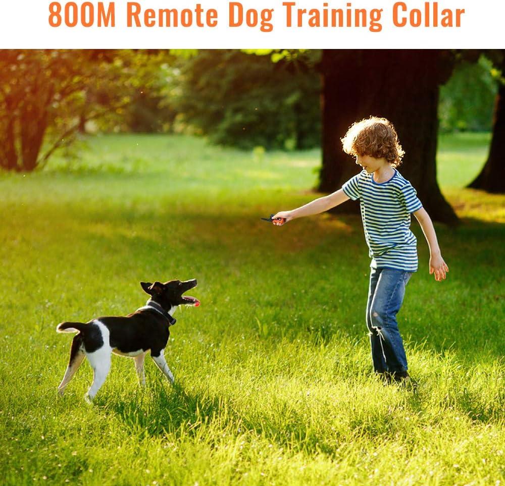 FANQIE Elektrisches Hundehalsband Remote Dog Training Collar mit Vibration Beep Shock Collar f/ür das Hundetraining 800M