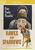Hawks & Sparrows [Edizione: Regno Unito] [Edizione: Regno Unito]