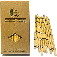 Absorberende papieren rietjes van gele bamboe, niet-van kunststof bestaande rietjes, 100 composteerbare papieren rietjes…