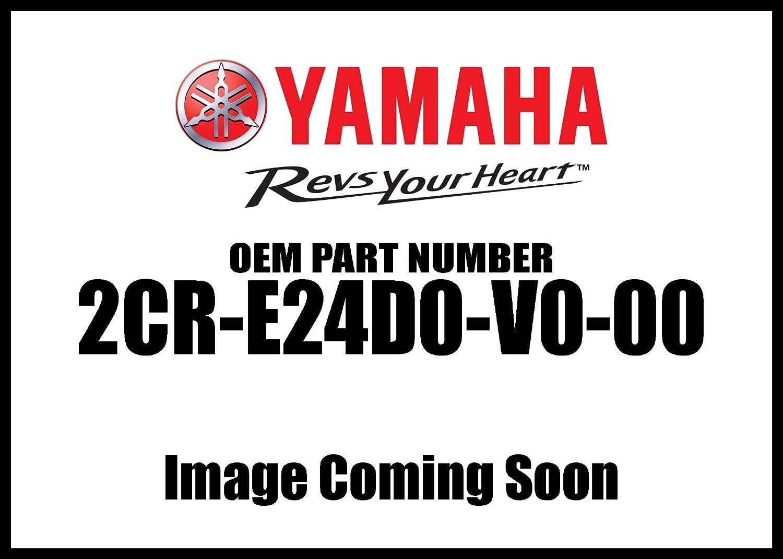 15-18 YAMAHA YZF-R1 Black Genuine Yamaha Accessories Radiator and Oil Cooler Guard Kit