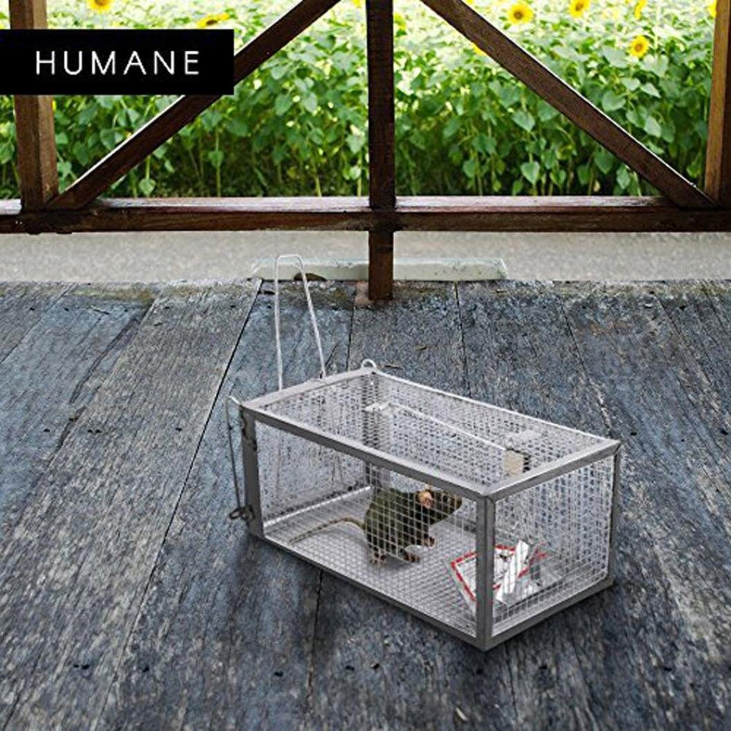 Animal Trap Cage,AutumnFall Clearance!!❤️❤️1PC Stainless Steel Rodent Animal Mouse Humane Live Trap Hamster Cage Mice Rat Control Catch Bait Durable 2018 Hot Sale (Silver) by AutumnFall_ Trap Cage (Image #1)