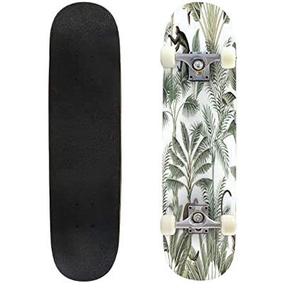 Classic Concave Skateboard Tropical Vintage Monkey Sloth Black Bird Palm Trees Banana Tree Floral Longboard Maple Deck Extreme Sports and Outdoors Double Kick Trick for Beginners and Professionals : Sports & Outdoors