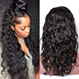 MsGem Water Wave Hair Wig Brazilian Virgin Hair Lace Front Wig 130% Density Unprocessed Human Hair Lace Wigs for Black Women Half Lace Wig Preplucked With Baby Hair 12 inch
