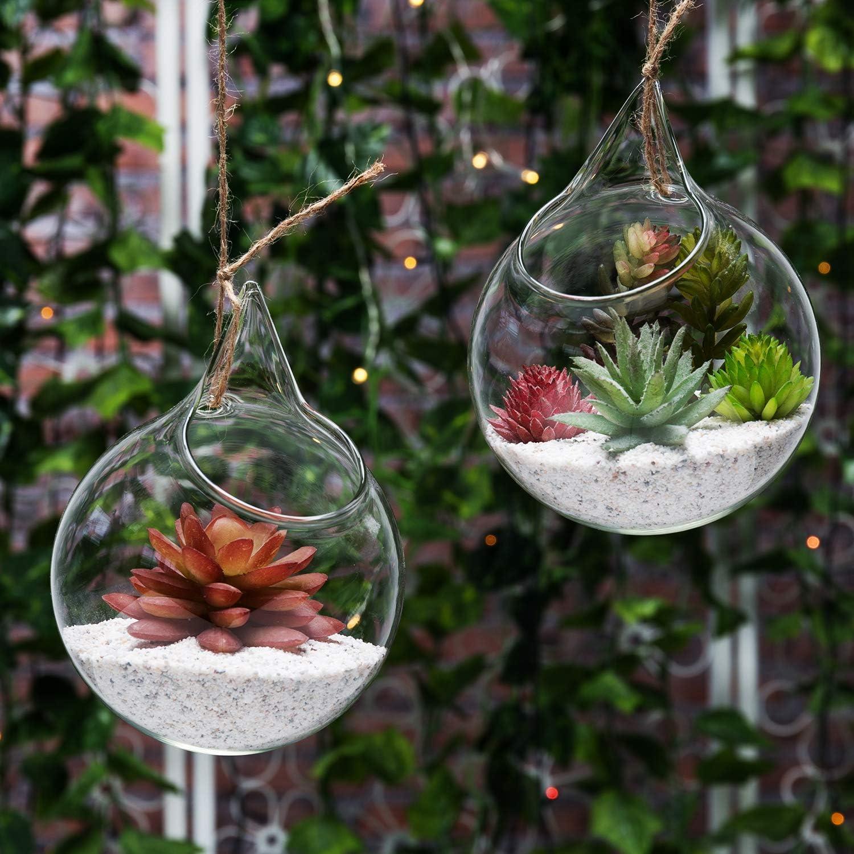 Amazon Com Set Of 2 Decorative Clear Glass Globe Hanging Air Plant Terrarium Planter Candle Holder Mygift Home Kitchen