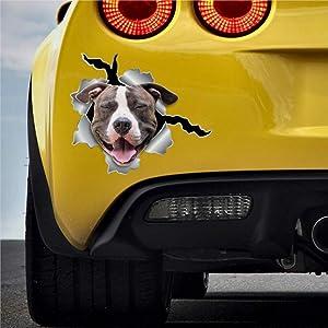 DONL9BAUER 3D Decal, Dog Sticker Pitt Bull Stickers Car Stickers Vinyl Auto Scratch Cover Car Decal for Home Truck Computer Laptop Travel Case Tumbler Door Window Bumper Decor