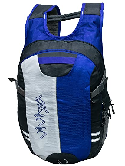 5603e119b1a7 Laptop Backpack-Viviza 2 Compartment Cushioned Laptop Backpack-Royal Blue   Amazon.in  Bags