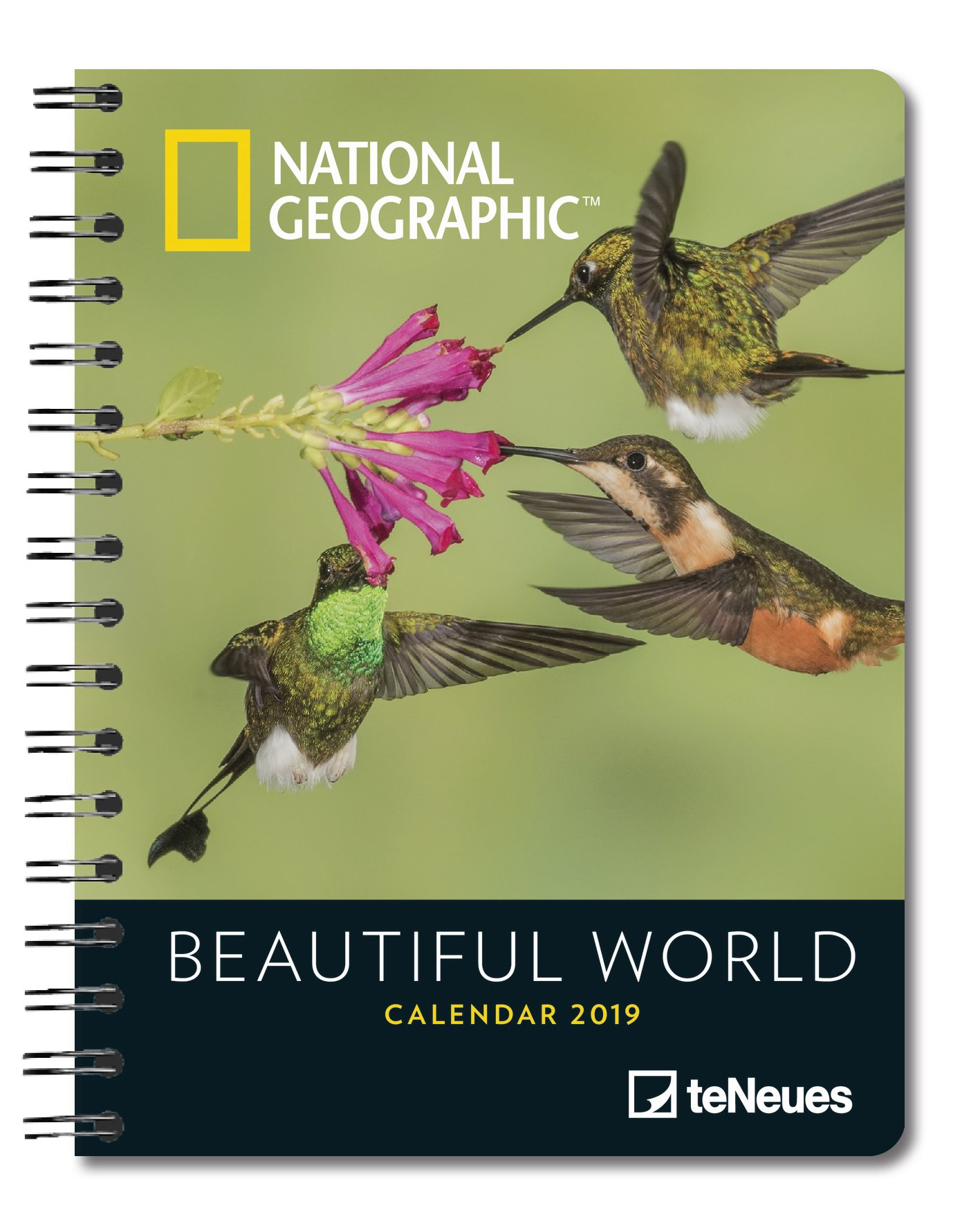 2019 Nat Geog Beautif World Deluxe Diary: Amazon.es: Libros