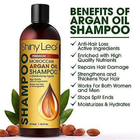 Moroccan Argan Oil Shampoo – Premium Salon Quality Sulfate Free Shampoo for  Hair Loss