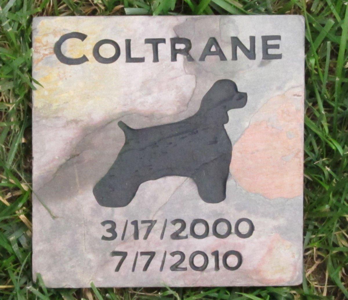 Cocker Spaniel Pet Memorial Garden Stone Grave Maker, Memorial Gift Slate 6 x 6, Other Dog Breeds Available