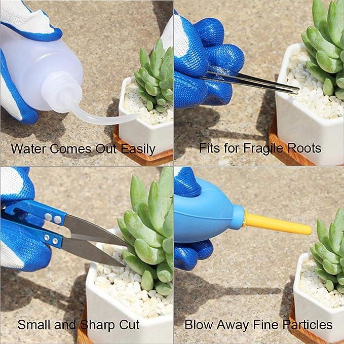 Star SSTO conjunto de herramientas de jardiner a, 14 piezas, Mini-conjunto de herramientas de mano, madera purificada, herramientas para plantas suculentas ...