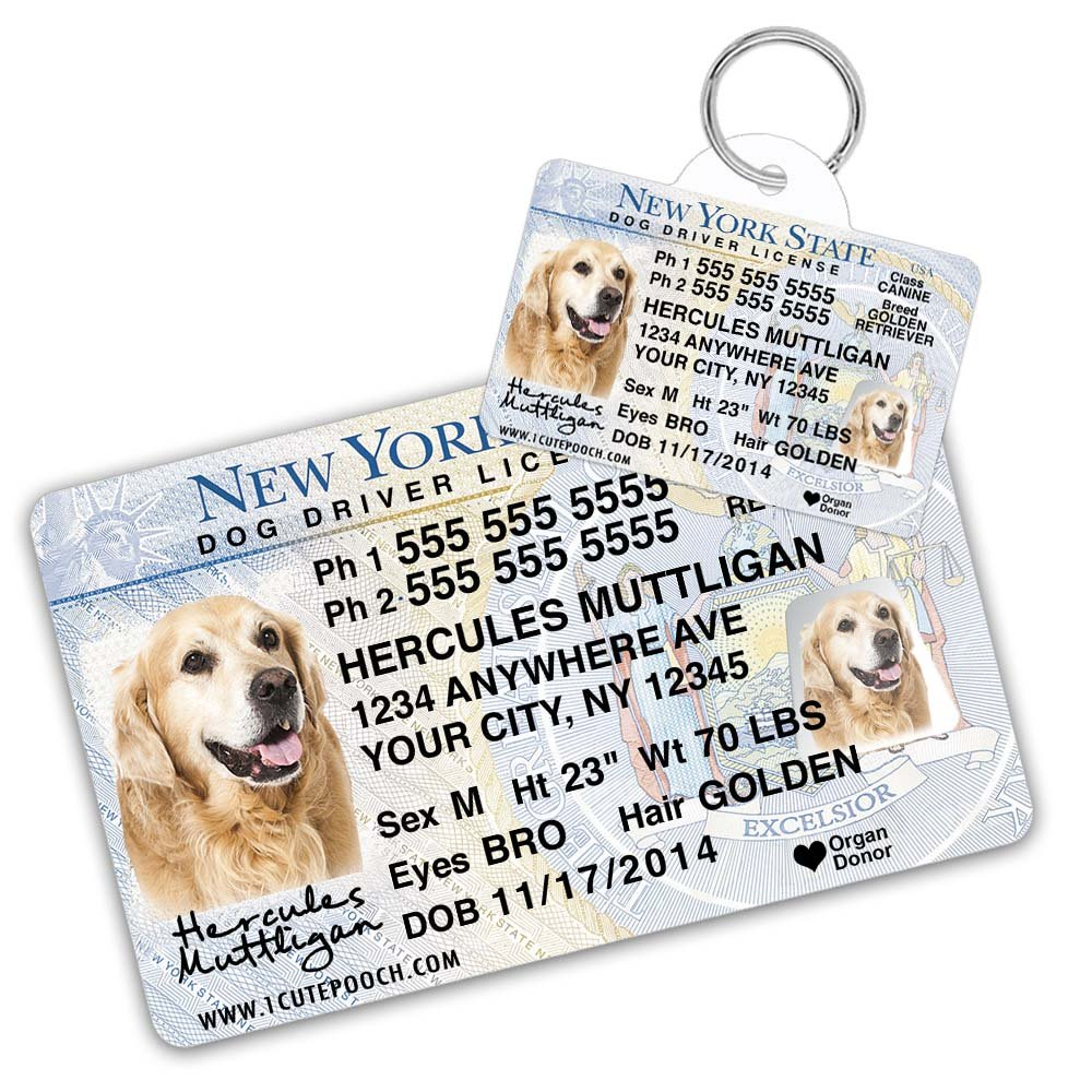 New York Driver License Custom Dog Tag for Pets and Wallet Card - Personalized Pet ID Tags - Dog Tags For Dogs - Dog ID Tag - Personalized Dog ID Tags - Cat ID Tags - Pet ID Tags For Cats by 1 Cute Pooch