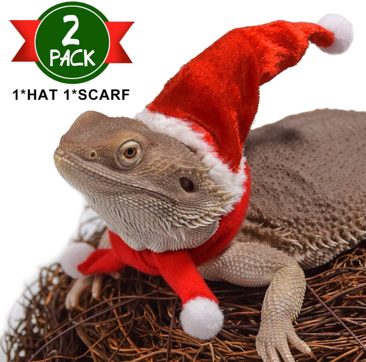 NEW DRAGON  SIZE FATHER CHRISTMAS OUTFIT