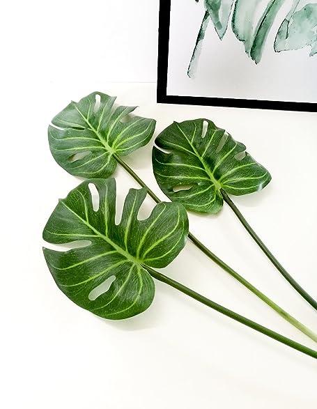 Housse Plante Monstera Tablette 7' à 8' V5xg1AAMM