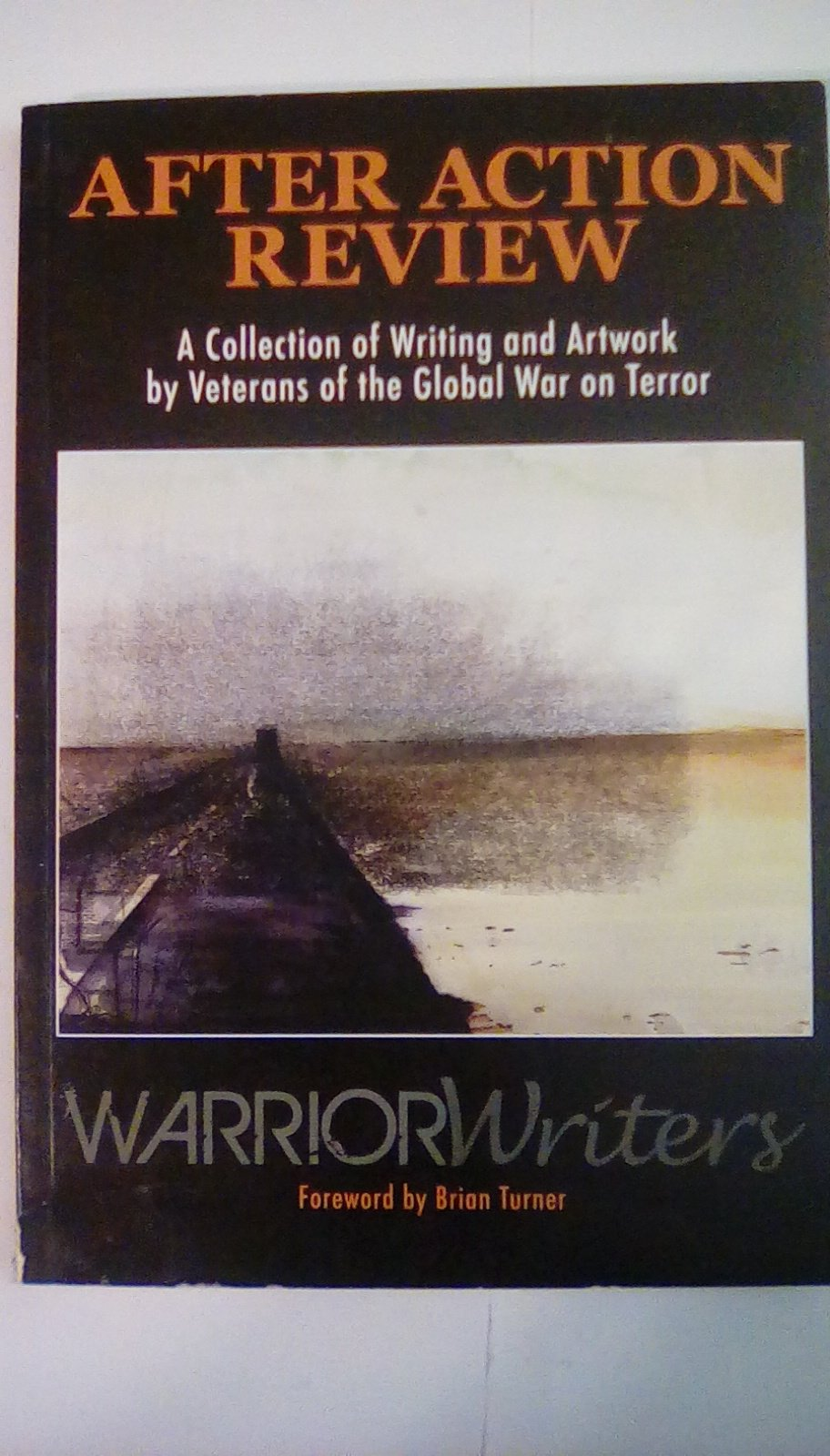 Download After Action Review : A Collection of Writing and Artwork by Vetrans of the Global War on Terror ebook