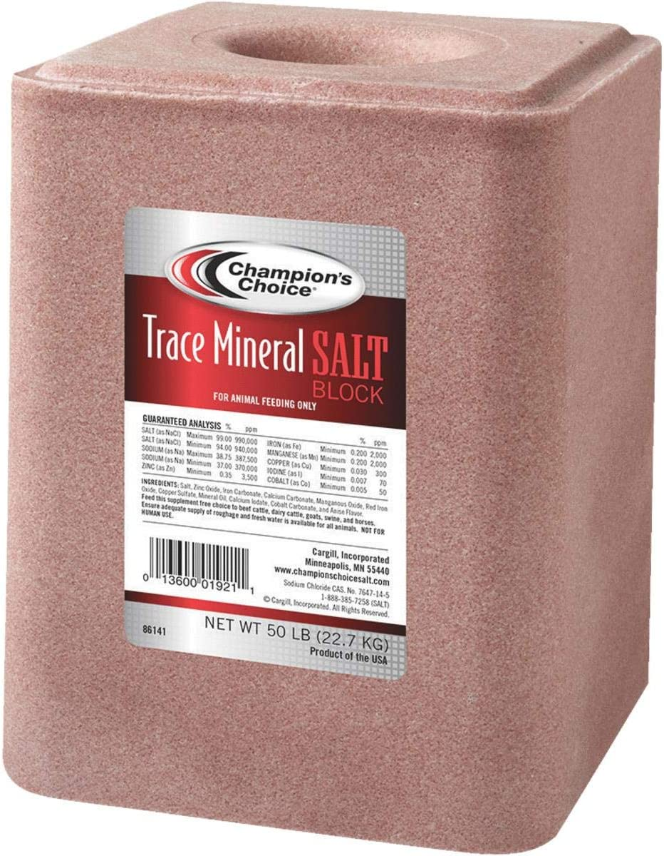 Champions Choice Trace Mineral Salt Block 50 Lb.