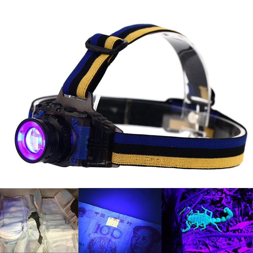 UV LED Headlamp, Evary Rechargeable Zoomable Ultraviolet LED Purple Light 3 Modes for Spot Scorpions Pet Urine Counterfeit Money Bed Bugs Minerals Leaks Stain Detection