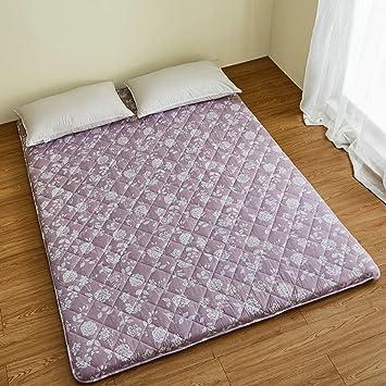 FDCVS Tatami colchones Dormitorio Plegable/Cómodo y Respirable Dormir colchoneta de Planta-B 100x200cm