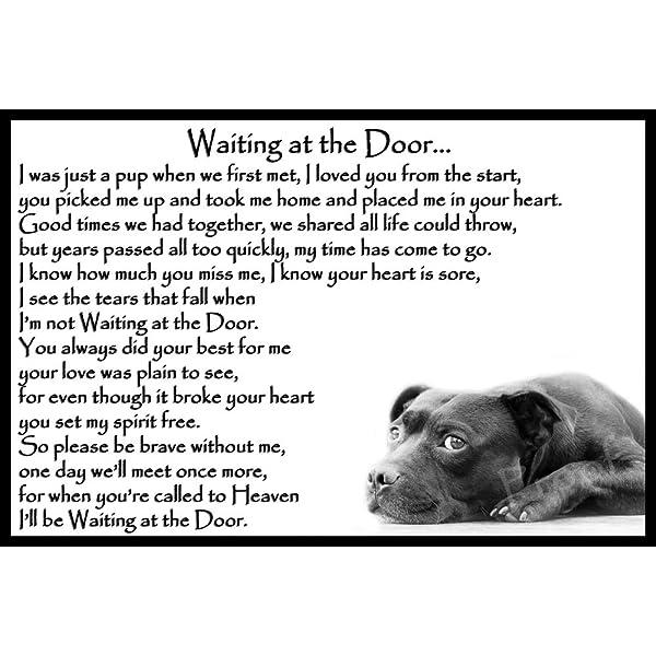 Waiting at the Door Staffordshire Bull Terrier Staffy bereavement pet dog loss sympathy Memorial