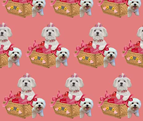 valentines fabric maltese valentine by dogdaze_ valentines fabric with spoonflower printed on cotton