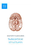 Anatomy flashcards: Subcortical structures: Learn all organs, terminology and nerves on the go (Kenhub Flashcards Book…