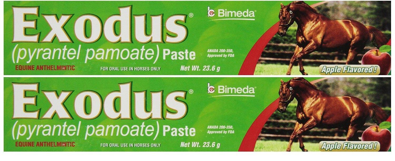 BIMEDA Pyrantel Paste Horse 23.6g wormer Equine Parasite Exodus (Pamoate Strongid) OTC 2 Pack