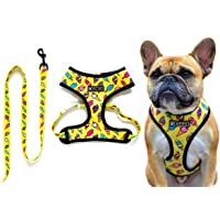 Dog Harness and Leash Set No Pull Pet Collar Comfortable Leash for Walking and Training for Puppy Small / Medium Dogs…